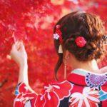 岡山後楽園2017秋の幻想庭園見どころは?紅葉も楽しめる!